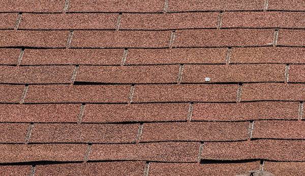 curling shingles need replaced